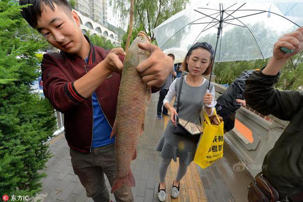 河北:市民非必要不进京、非必要不出省