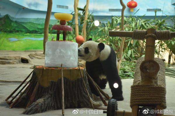 人力资源服务商熊猫云聘完成800万天使轮融资