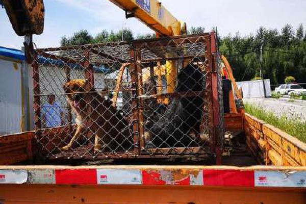 工人施工时路面爆炸 多人被弹飞后受伤