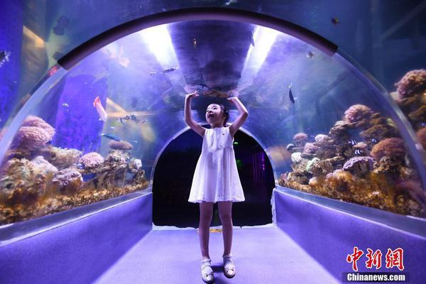 黑龙江交警护送大雪滞留游客 张艺谋也在其中