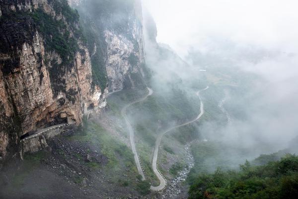馆藏:回溯千年青瓷历史 重走海上丝绸之路