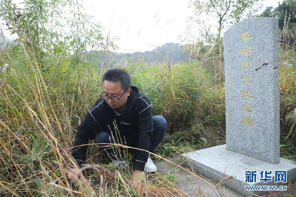 """搜狐股价大涨20.16%,张朝阳""""尽早盈利""""华尔..."""