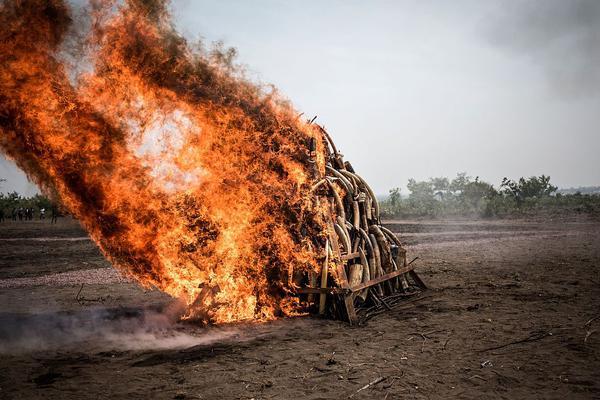 危险!印度联手五大军事强国,警告不得援助巴铁