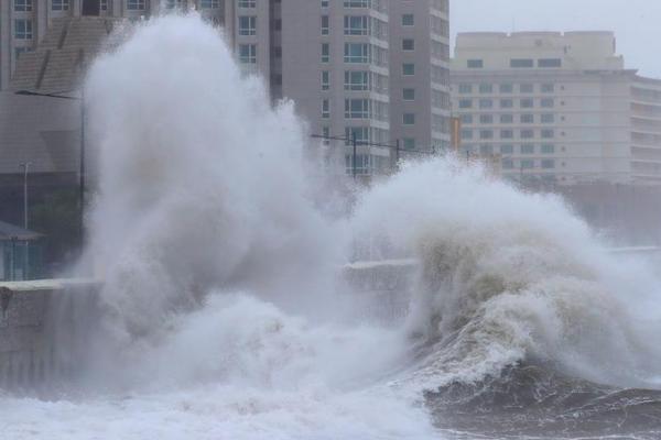 沈海高速车祸有危重4人在ICU救治 三部委派出工作组