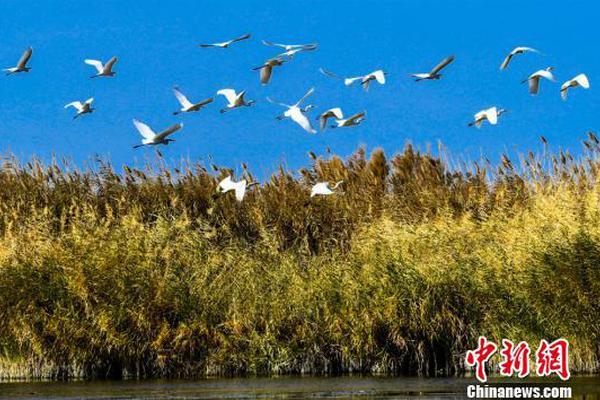 北京:恢复韩国首尔到北京直航航班 每周安排一班