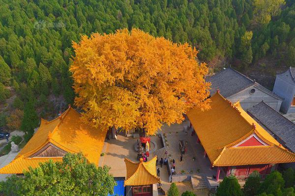 中国最好玩的省,只能是广西