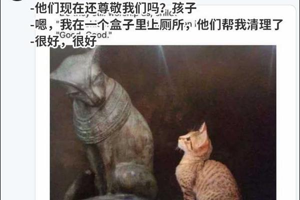 解决汉语边缘化,靠提高中高考语文分数占比不可取!