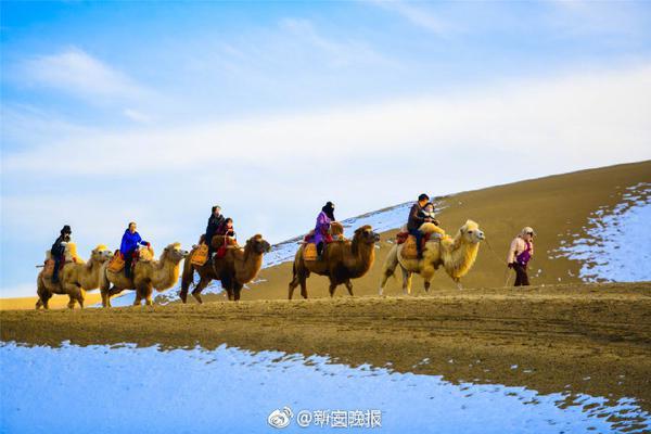 上海建桥学院将扩招围棋本科生