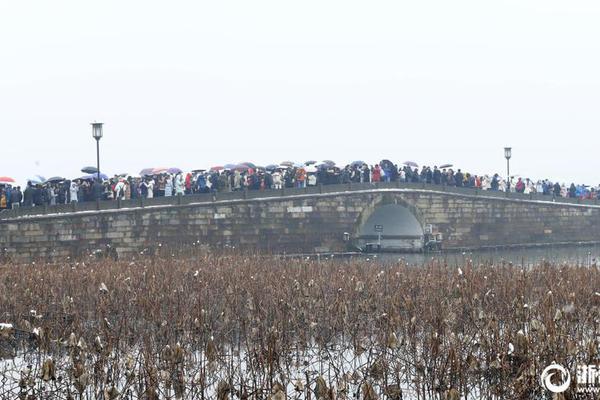 俄航客机起火致41死新进展:两个黑匣子已找到