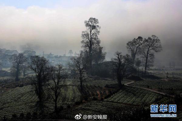 《中国应对气候变化国家方案》颁布于()。