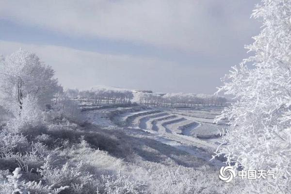 河南洛阳龙门石窟开凿于()时期