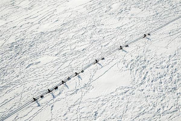 《冰汽时代》年销量破140万份_大发澳洲三分彩分析