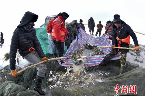 """高娓娓:刘强东案,揭露""""高管出国学习""""的灰色.."""