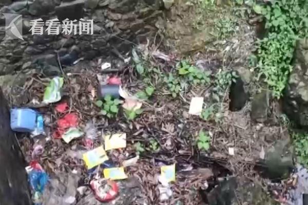 香港特区立法会否决弹劾行政长官议案