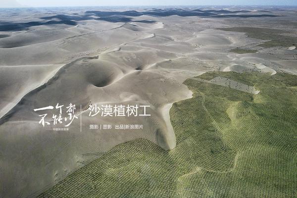北京世园会国际展园印象