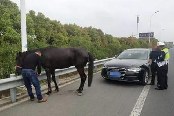 can a human lift a car