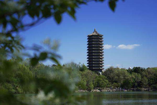 印媒:疫情初印度嚴防中國人,泰姬陵重開首個遊客是中國人