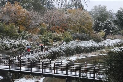 北京植物园雪中漫步樱桃沟感受自然周围的青山、植被覆盖白雪,蜿蜒的栈道穿行于树木之间,雪中漫步在樱桃沟,犹如置身仙野,感受自然野趣。