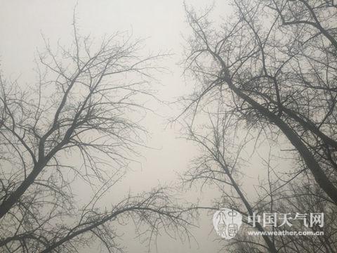 昨天早晨,北京中关村南大巷左近天空灰毛毛一片。(拍照:赵嫣嫣)