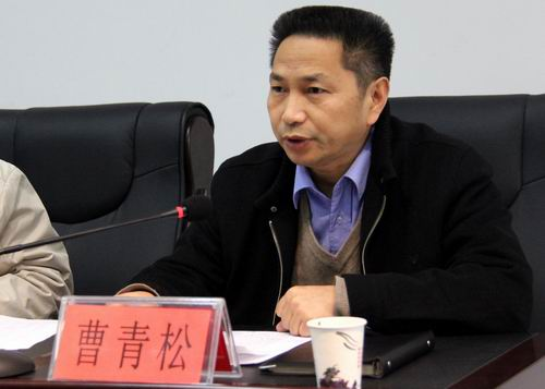 湖南临湘原副市长被双开 与人通奸非婚生子