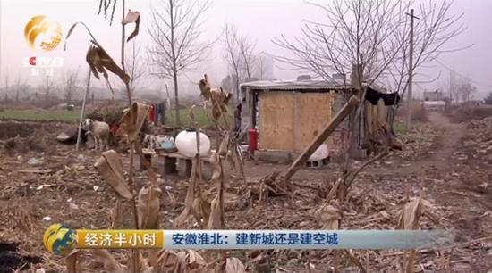 四年来,两位老人就一直住在这间用砖头和塑料布搭建的小窝棚里。