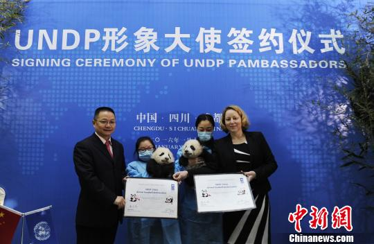 """UNDP形象大使""签约典礼现场。 安源 摄"