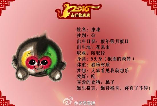 """猴年春晚吉祥物""""康康""""简历"""