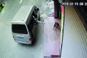 监控显现,面包车上的人用东西疾速将狗拖走。资讯时报记者 叶伟报 摄