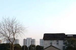 【上海】下一代不会再有乡村记忆