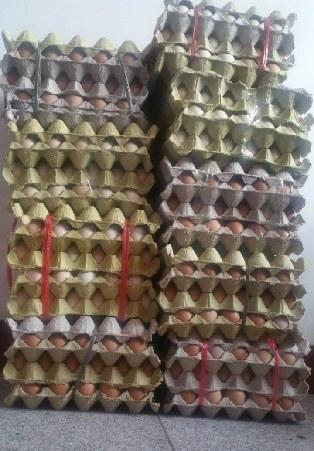 收到的鸡蛋