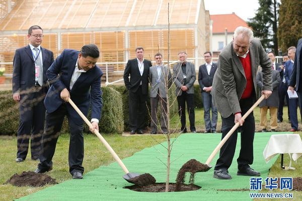 当地时间3月28日,国家主席习近平在布拉格拉尼庄园同捷克总统泽曼举行会晤。会晤前,两国元首在庄园里种下一株来自中国的银杏树苗。新华社记者 兰红光 摄