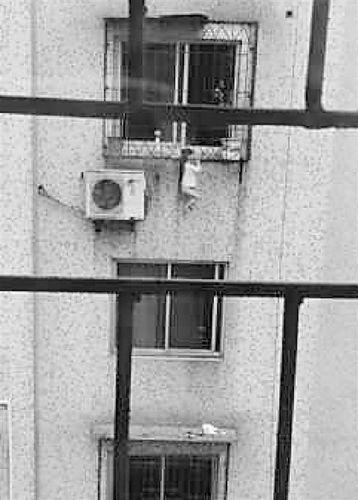 小孩悬挂在五楼的窗台上