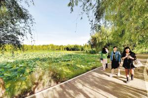 昆明环保要点:滇池的水、土壤污染防治、扬尘