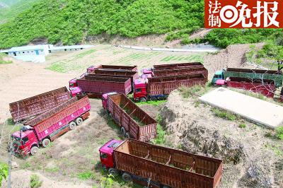 紧挨着倾倒污泥的山沟空地上,停着十来辆渣土车,村民说是当时查扣的运输车辆