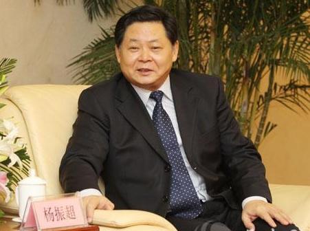 安徽副省长杨振超接受调查(图/简历)
