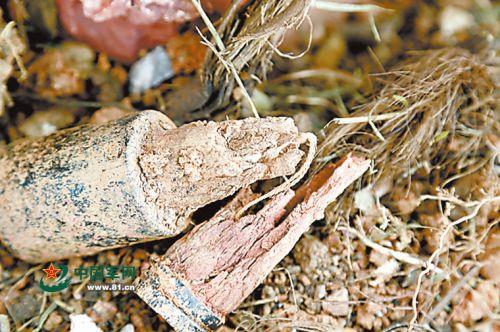 埋藏多年的手榴弹,木柄虽已朽烂,引信依然完整。