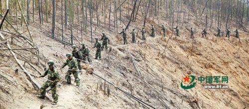 爆破排雷后,胡匪们用扫雷耙认真搜排,完全排除雷患。