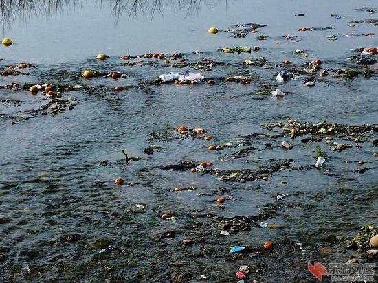 水污染。资料图