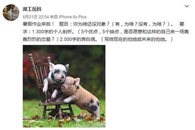 岳馨钰在本人的小我微博上安插暑假功课。微博截图