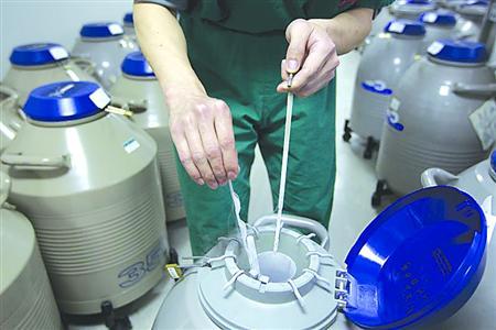 胚胎学家正从液氮罐里掏出冷冻胚胎/采访目标供图