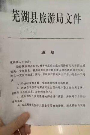 """芜湖县游览局文件""""告诉""""。外地网友供图"""
