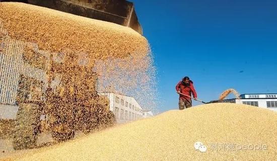 2004年, 国务院颁布了《粮食流通管理条例》。其中明确规定,经营者必须取得粮食收购资格后,方可从事粮食收购活动。图片来自网络。
