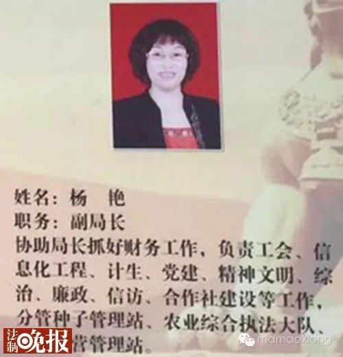 杨艳职务信息