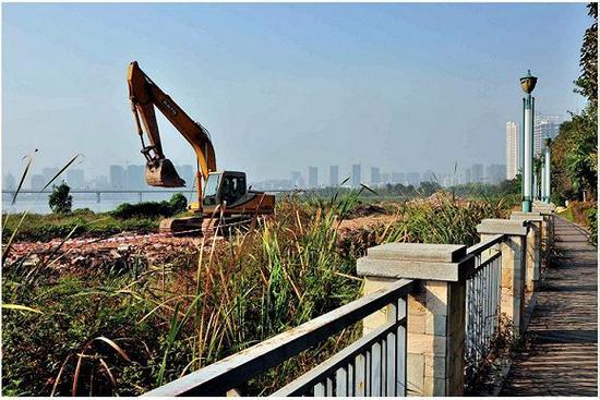 2015年,堆放的淤泥上长满了草,还出现了建筑垃圾。