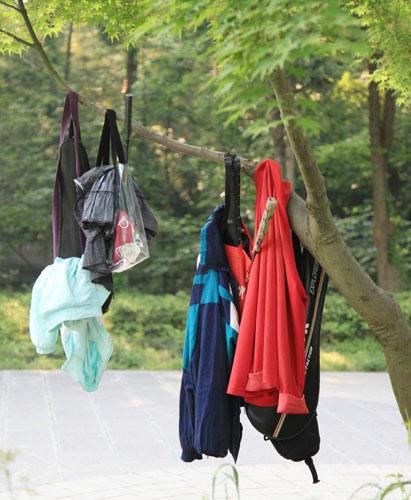 资料图片:游客把衣服、袋子等物品悬挂在南京中山风景区一棵小树上。