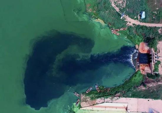 排入渤海的天津独流减河上游的宽河泵站正在排放污水(岳月伟7月6日摄)