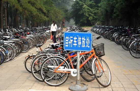 校园自行车 资料图