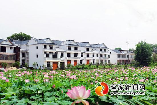 实行工业扶贫后,赣南越来越多的贫苦户住上了新居。图为瑞金市沙洲坝镇洁源村。