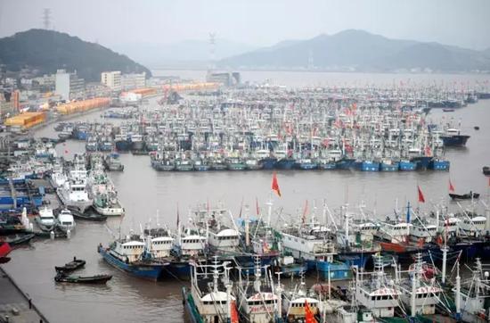 舟山法院借力海洋协会化解涉海纠纷的实践探索