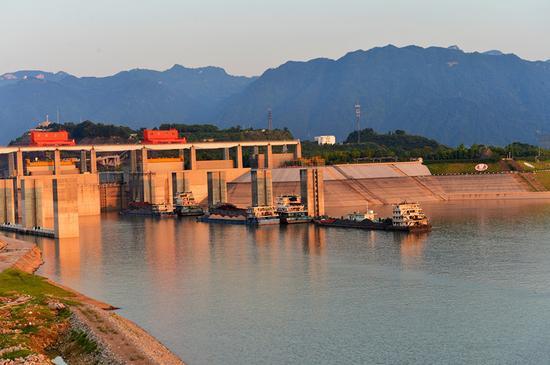 7月25日,船舶停靠在三峡五级船闸前等待进闸。(郑家裕 摄)新华社发